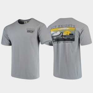 Campus Scenery Comfort Colors Men Gray UCF Knights College T-Shirt